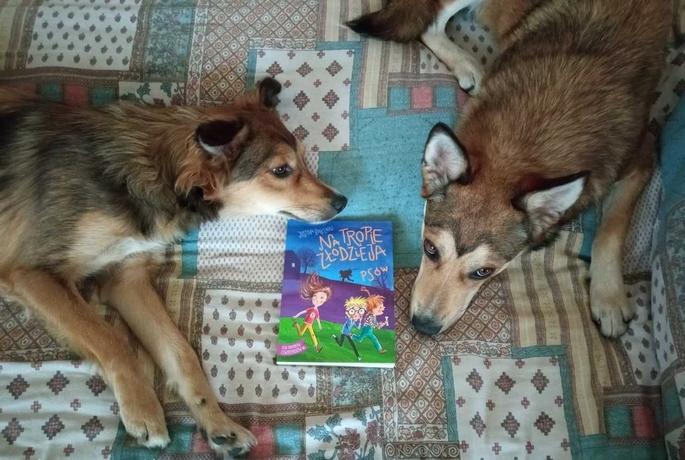Na tropie złodzieja psów – Justyna Balcewicz
