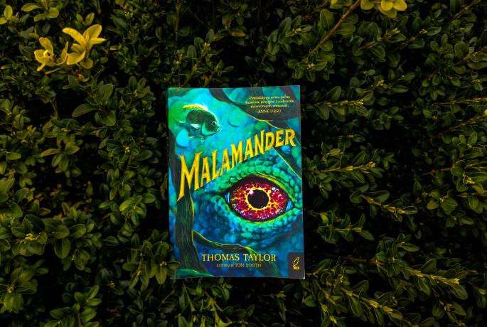 Malamander – Thomas Taylor